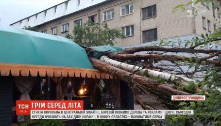Буревій разом із дощем валив рекламні конструкції та дерева на Дніпропетровщині