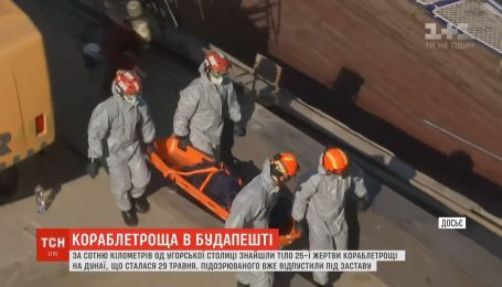 Дунайское кораблекрушение: украинский капитан вышел под залог
