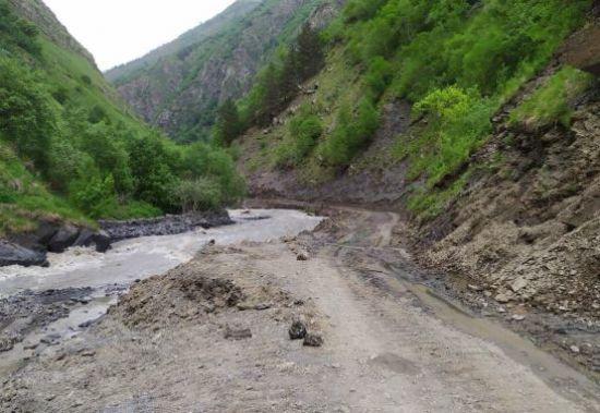 У горах Грузії машина з туристами скотилася в ущелину