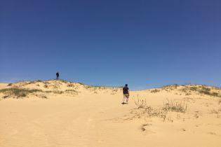 Природное чудо Херсонщины Алешковская пустыня. Почему стоит поехать в украинскую Сахару