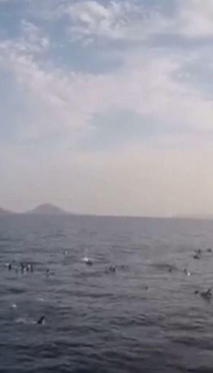 Судно с беженцами затонуло возле турецкого курорта