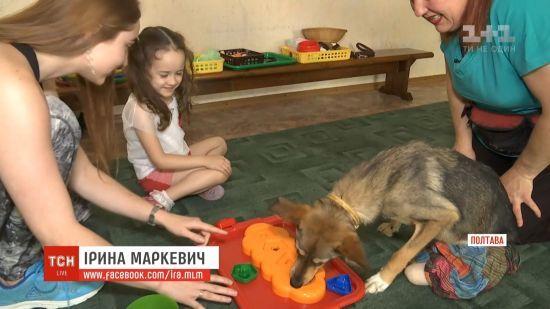 Собака з інвалідністю став найкращим реабілітологом для дітей з затримкою розвитку