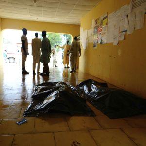Дети-смертники устроили взрывы - погибли 30 человек