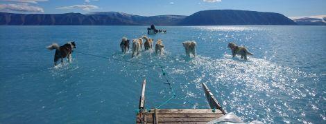 Світ облетіло фото з упряжкою собак у затопленій Гренландії: що там відбувається