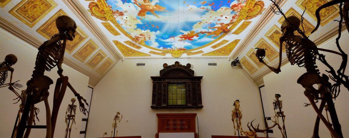 Музей Бургаве в Нидерландах был признан лучшим европейским музеем 2019 года
