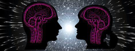 З чого складається та як функціонує людський мозок. Розповідаємо у трьох інфографіках
