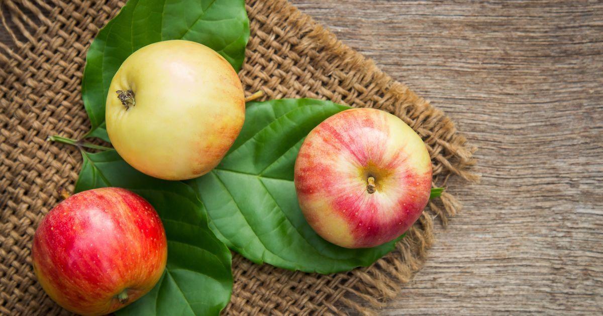 """До народного Дня каші готуємо пиріг """"Яблука на пшоняній каші"""""""