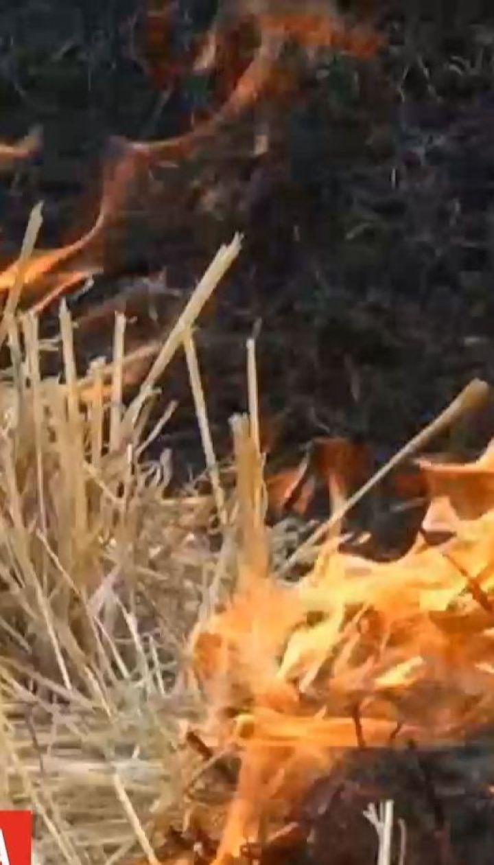 Найвищий рівень пожежної небезпеки оголосили на Миколаївщині