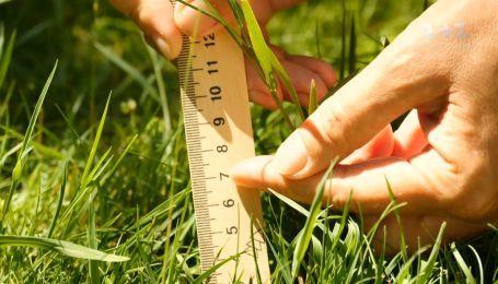 Как правильно ухаживать за газоном летом - Весна на даче со Stihl
