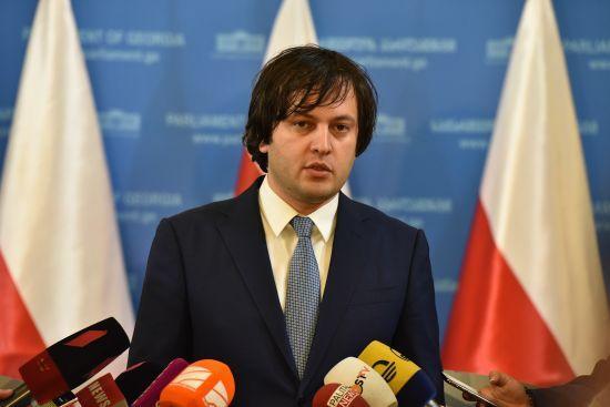 Протести в Грузії: очільник парламенту Кобахідзе подав у відставку