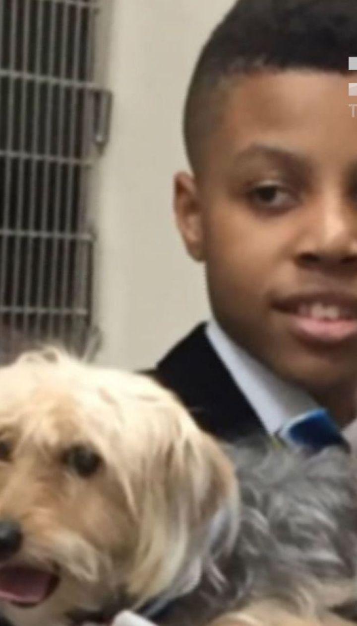 В США 12-летний мальчик шьет собакам галстуки-бабочки, чтобы помочь им быстрее найти хозяев