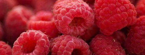 Сезон малини: скільки триватиме в Україні, який врожай та ціни на ягоду