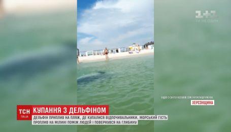 На Херсонщине дельфин приплыл на пляж, где купались отдыхающие