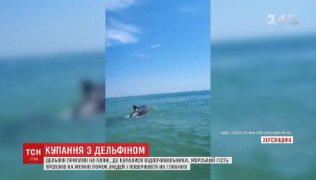 Дельфин порадовал отдыхающих в Херсонской области неожиданным появлением