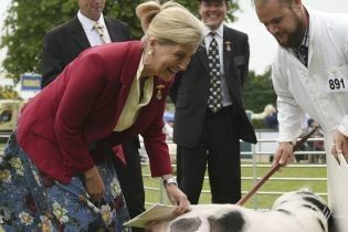 Это забавно: графиня Уэссекская Софи сфотографировалась со свиньей