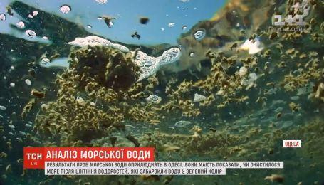 В Одессе обнародуют результаты более 100 проб воды, которые набирали на исследования вдоль пляжей