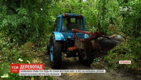 Поваленные деревья перегородили единственную проезжую дорогу на Киевщине