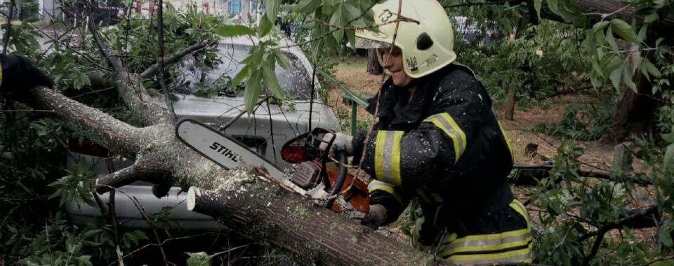 Негода прокотилася Україною: повалені дерева травмували людей та трощили автівки