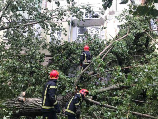 Негода залишила без світла 112 населених пунктів та повалила понад три десятки дерев