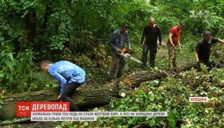 Знімальна група ТСН ледь не стала жертвою бурі на Київщині