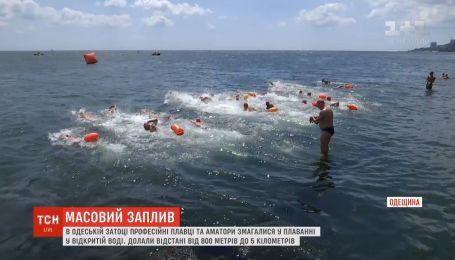 Профессиональные пловцы и любители соревновались в плавании в Одесском заливе