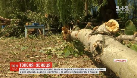 На Харьковщине огромный тополь упал на семью, которая отдыхала на пляже