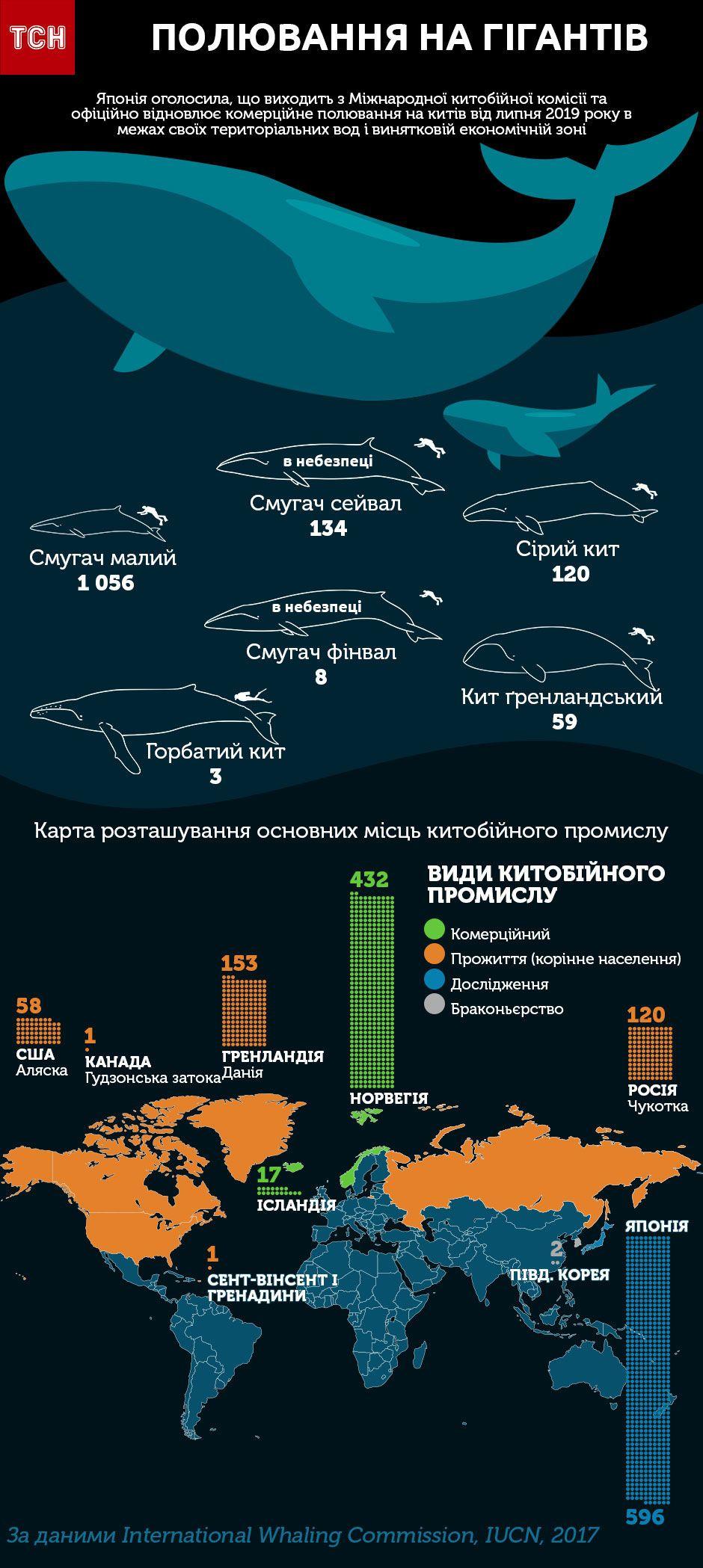 Китобійний промисел у світі, інфографіка