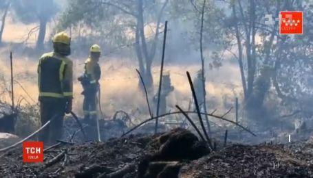 Нищівна пожежа в Іспанії: вогонь дістався околиць Мадрида
