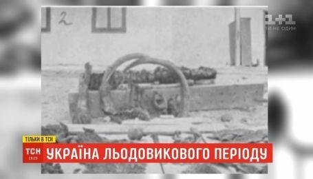 Украина ледникового периода: как остатки древних животных оказались в почве Прикарпатья