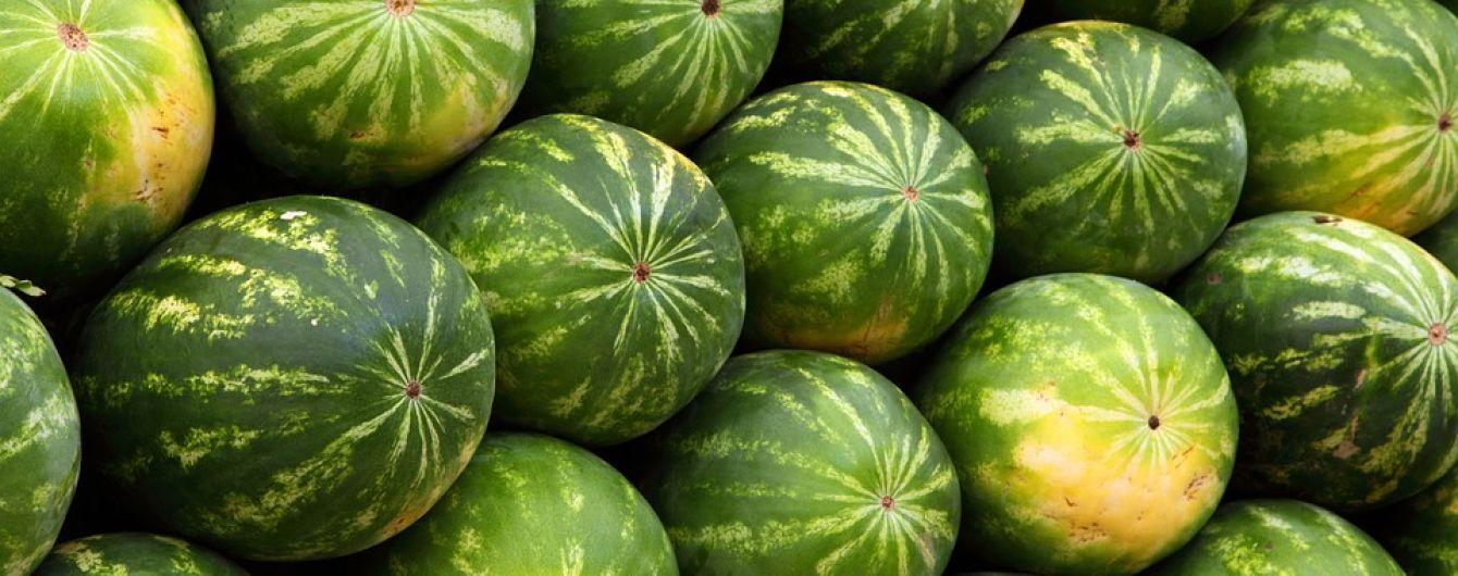 В Украине начался сезон арбузов: сколько стоят бахчевые на рынках и в магазинах