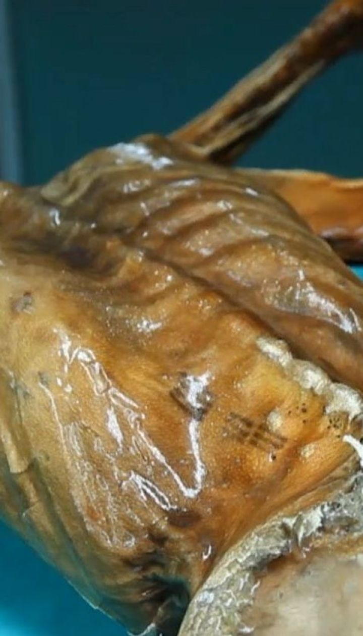 Украина ледникового периода: можно ли на Прикарпатье найти мумию