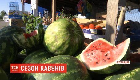 Сезон арбузов стартовал в Украине на месяц раньше
