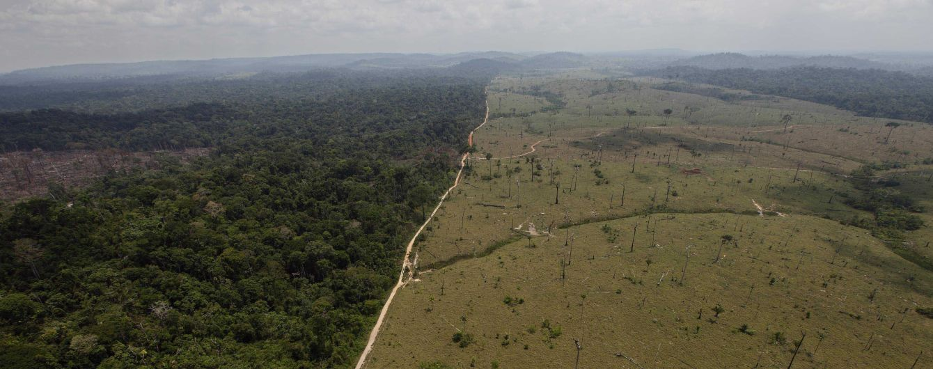 """У бразильській Амазонії почали вдвічі швидше нищити """"легені планети"""""""