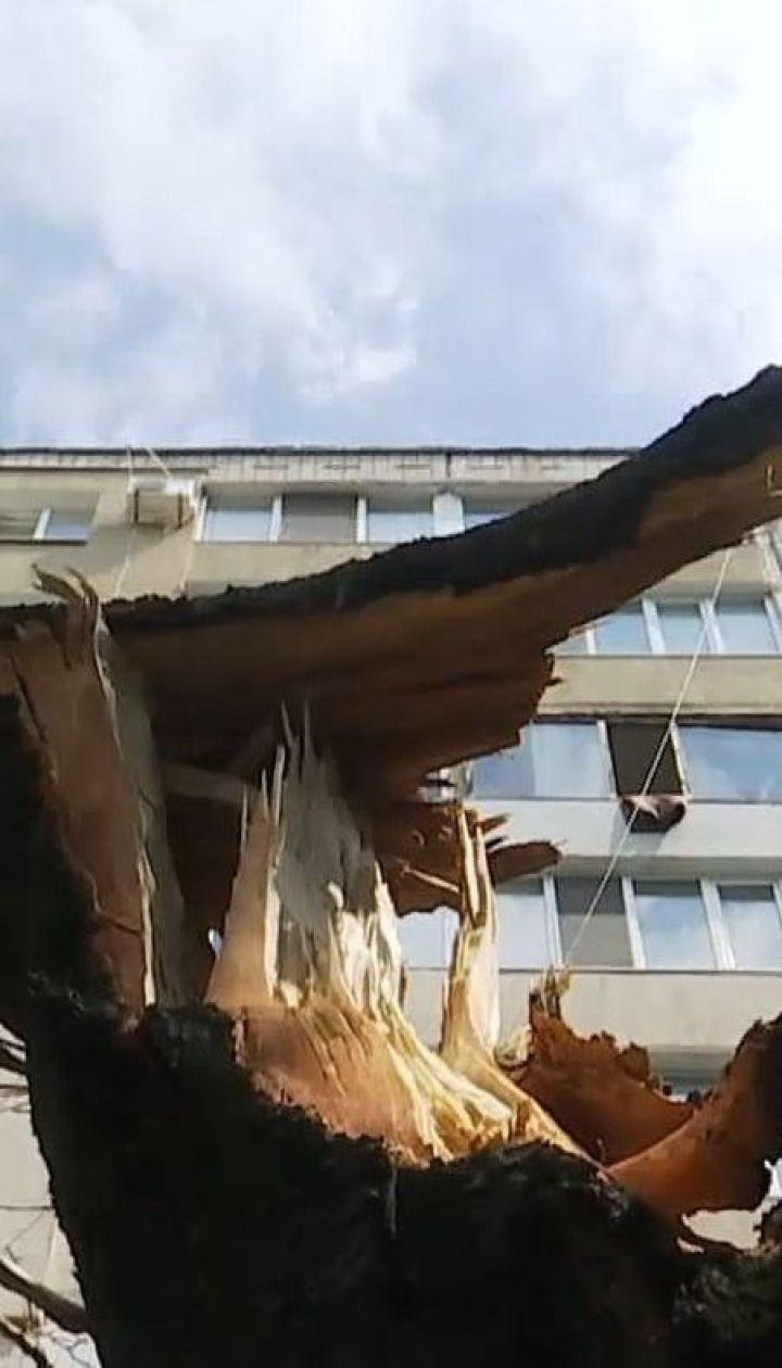 В Кривом Роге мужчина во время урагана пытался украсть оборванные провода, его убило током