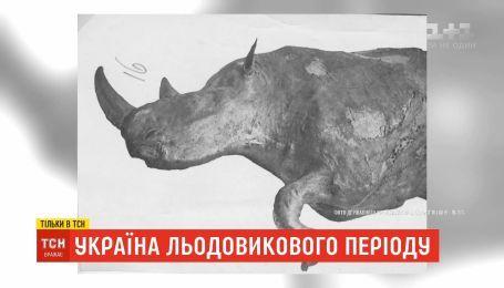 Украина ледникового периода: о сенсационных находках в селе на Прикарпатье