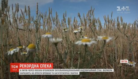 Через небувалу посуху в Литві прогнозують збитки для всієї економіки країни