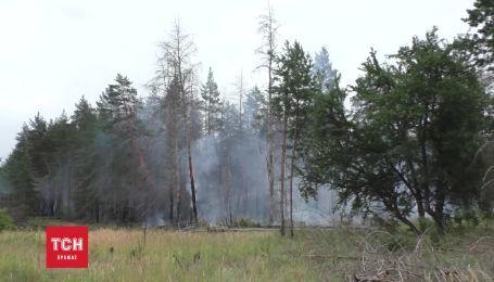 Замінований ліс на Луганщині гасили 25 пожежних машин