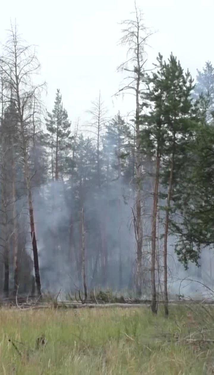 Заминированный лес на Луганщине гасили 25 пожарных машин