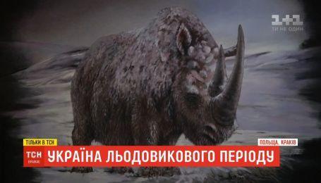 Украина ледникового периода: на Прикарпатье нашли пределы болота, где утонули доисторические животные
