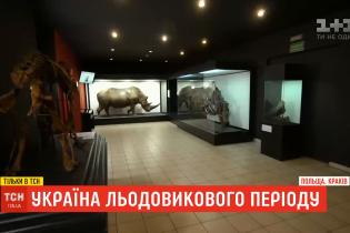 Украина ледникового периода: какие сокровища могут быть спрятаны на Прикарпатье