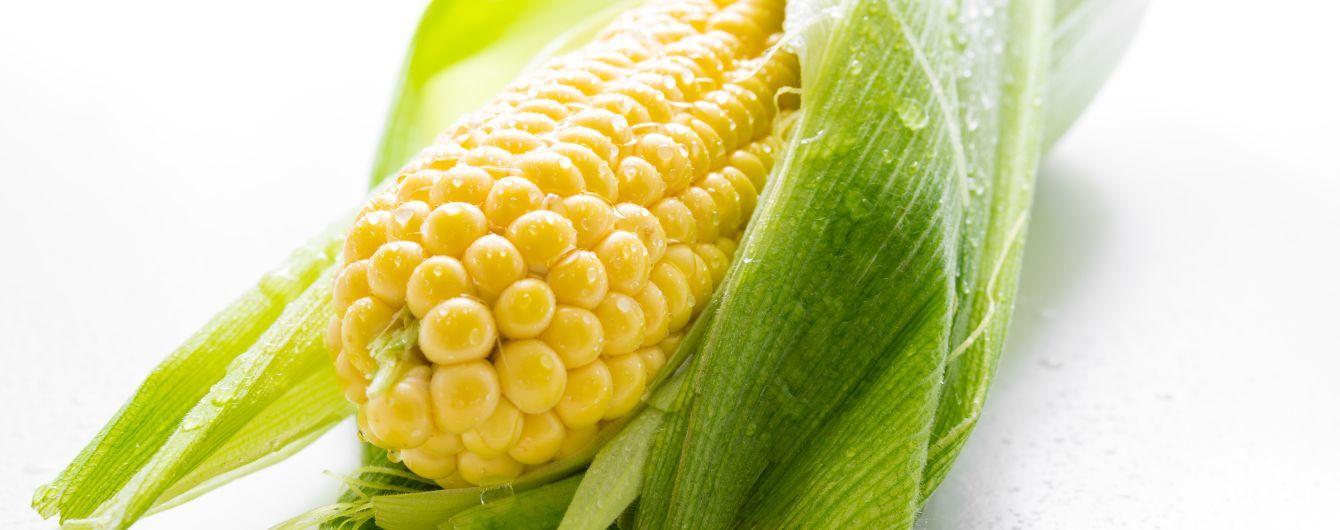 Торговая война Китая и США помогла украинским производителям кукурузы