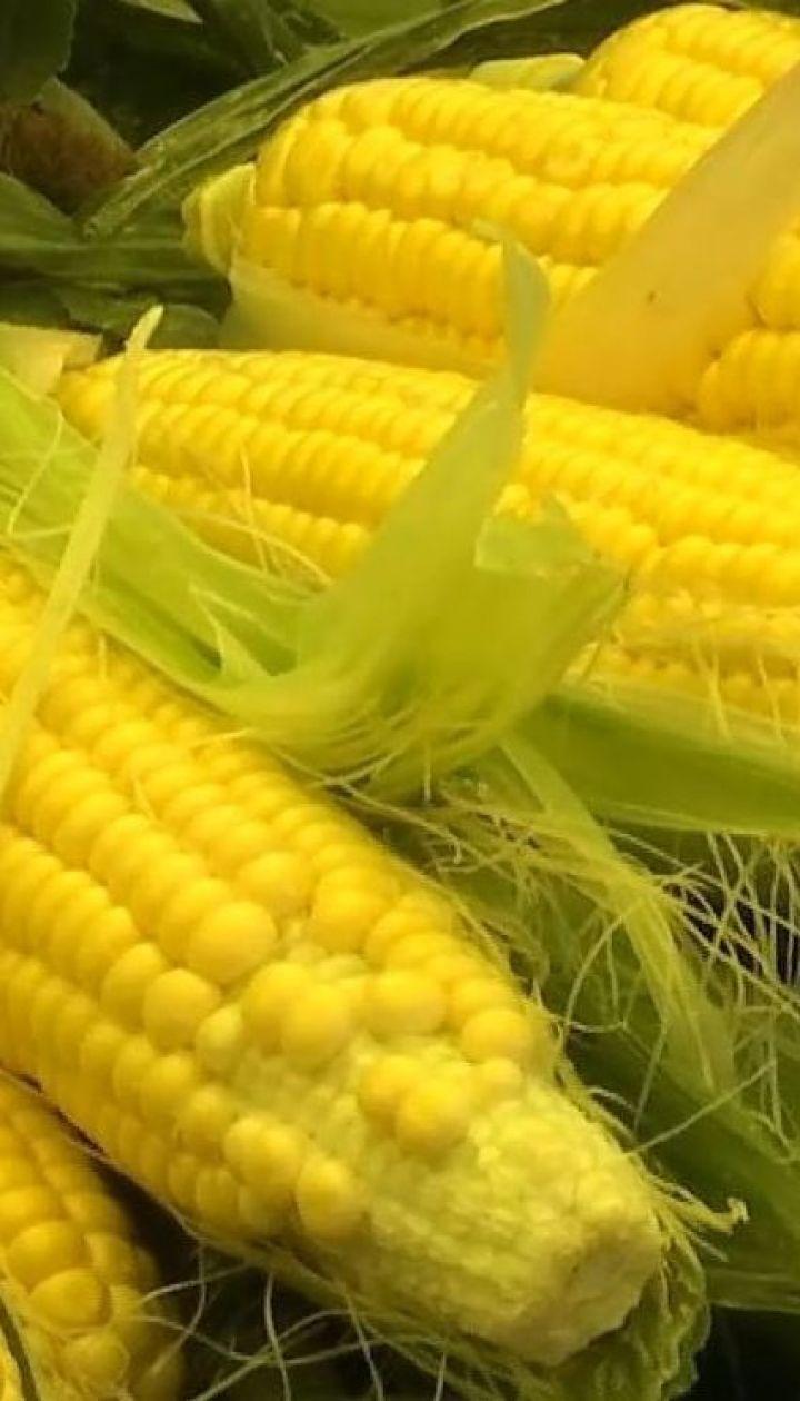Как выбрать вкусную кукурузу и не переплатить