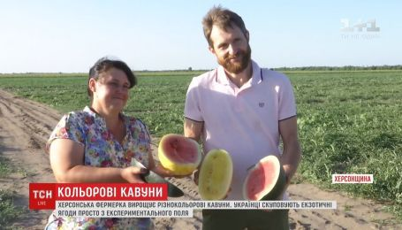 Необычные арбузы желтого и оранжевого цвета выращивают в Херсонской области