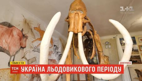 Украина ледникового периода: есть ли надежда, что возле уникальной Старуни начнутся раскопки
