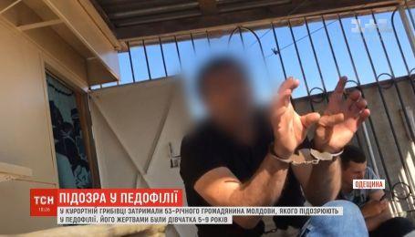 В Одесской области мужчина сдавал туристам жилье, а потом развращал их детей
