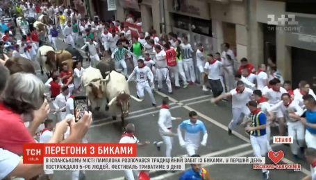 5 человек пострадали во время экстремального забега с быками в Испании