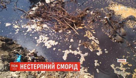 Жители Луцка и близлежащих сел страдают от невыносимой вони