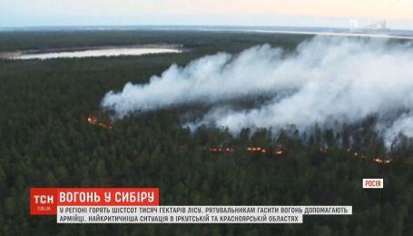 У Сибіру горять 600 тисяч гектарів лісу