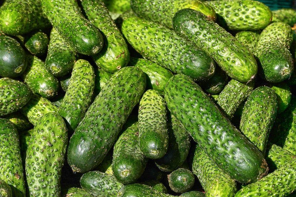 Огірки