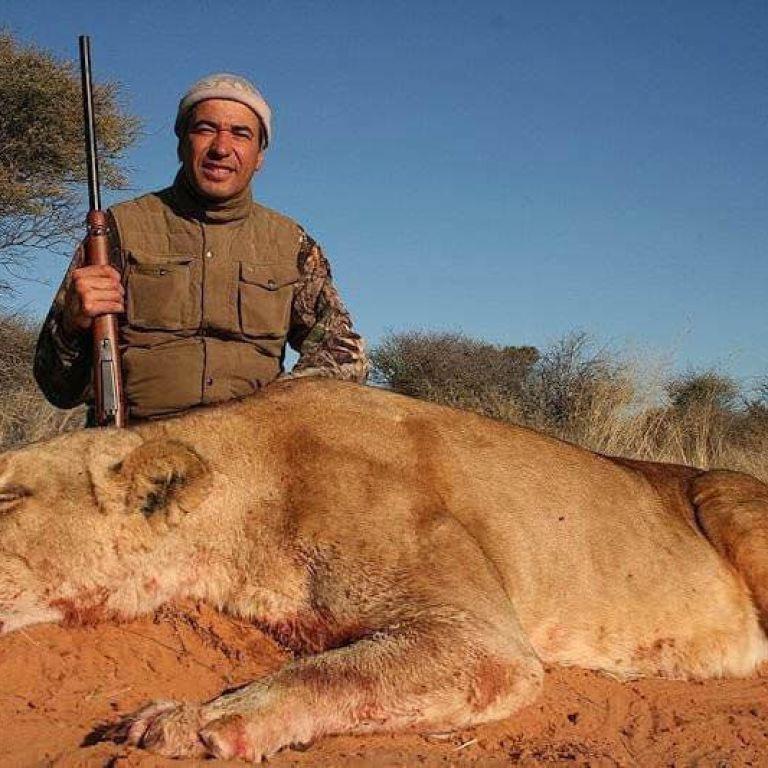Охота сафари игра онлайн
